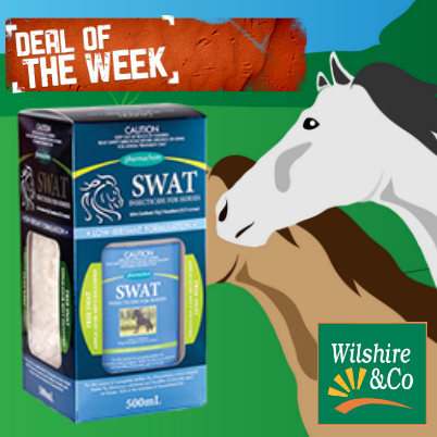 deal-of-the-week-swat.jpg