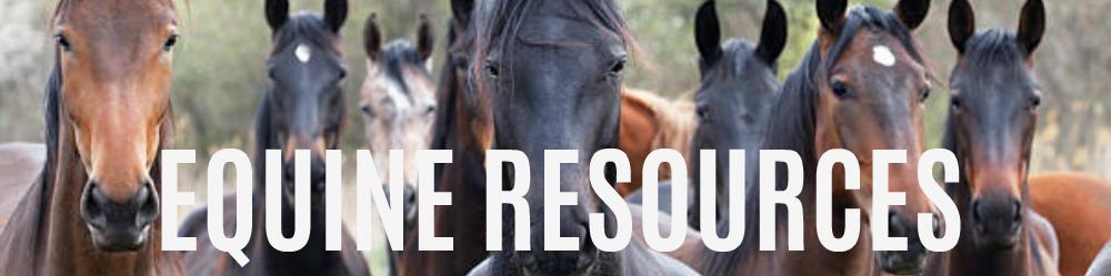 equine-resources.jpg