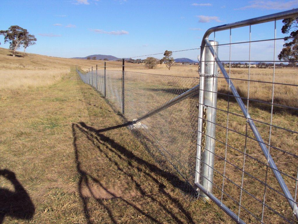 exclusion-fencing-4.jpg