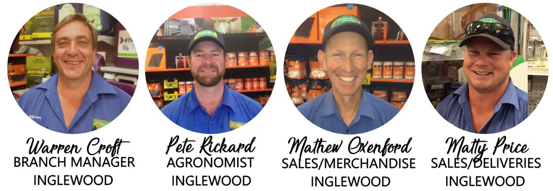 inglewood-staff-group-correct.jpg