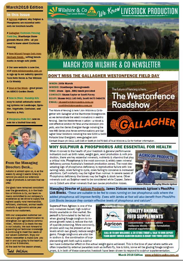 page-1-newsletter-march.jpg