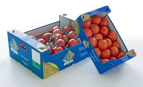 tomatoe-box.jpg